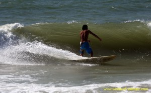 surfing_-_sup_20121115_1776876203