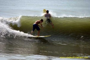 surfing_-_sup_20121115_1824868447