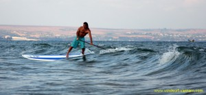 surfing_-_sup_20121115_1872241501