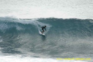 surfing_-_sup_20121115_1937106514