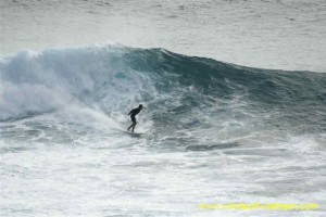 surfing_-_sup_20121115_1985195212